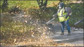 Leaf blowing: Answering your questions