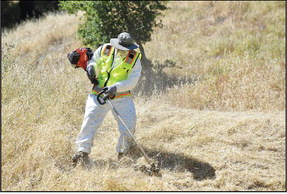 It's hot and it's fire season – time to update emergency plan