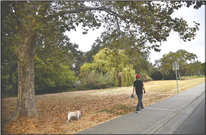 Walking paths plan takes next step
